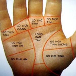 """Tải sách xem bói bàn tay """"Tiếng nói của bàn tay – Nguyễn Đình Phúc"""""""