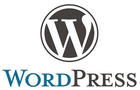 Read more about the article [VESTACP – PHẦN 2] TẠO DNS RIÊNG ĐỂ TRỎ TÊN MIỀN VỀ SERVER