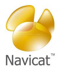 Navicat Premium 15.0 Full Key – Phần mềm ứng dụng lập trình