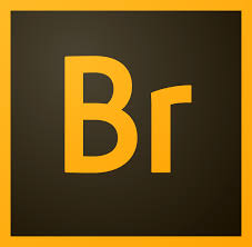Download Adobe Bridge CC 2019 9.0.2 Full-Phần mềm quản lý thư viện ảnh