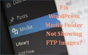 Read more about the article Khắc phục lỗi Tải ảnh qua FTP nhưng không hiện trong Thư viện WordPress